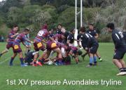 1st Xv Pressure Avondales Tryline
